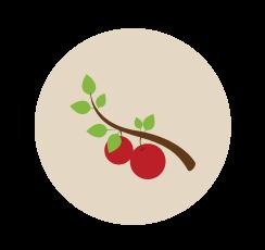 environment_circle