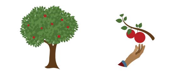 environment_graphic.original